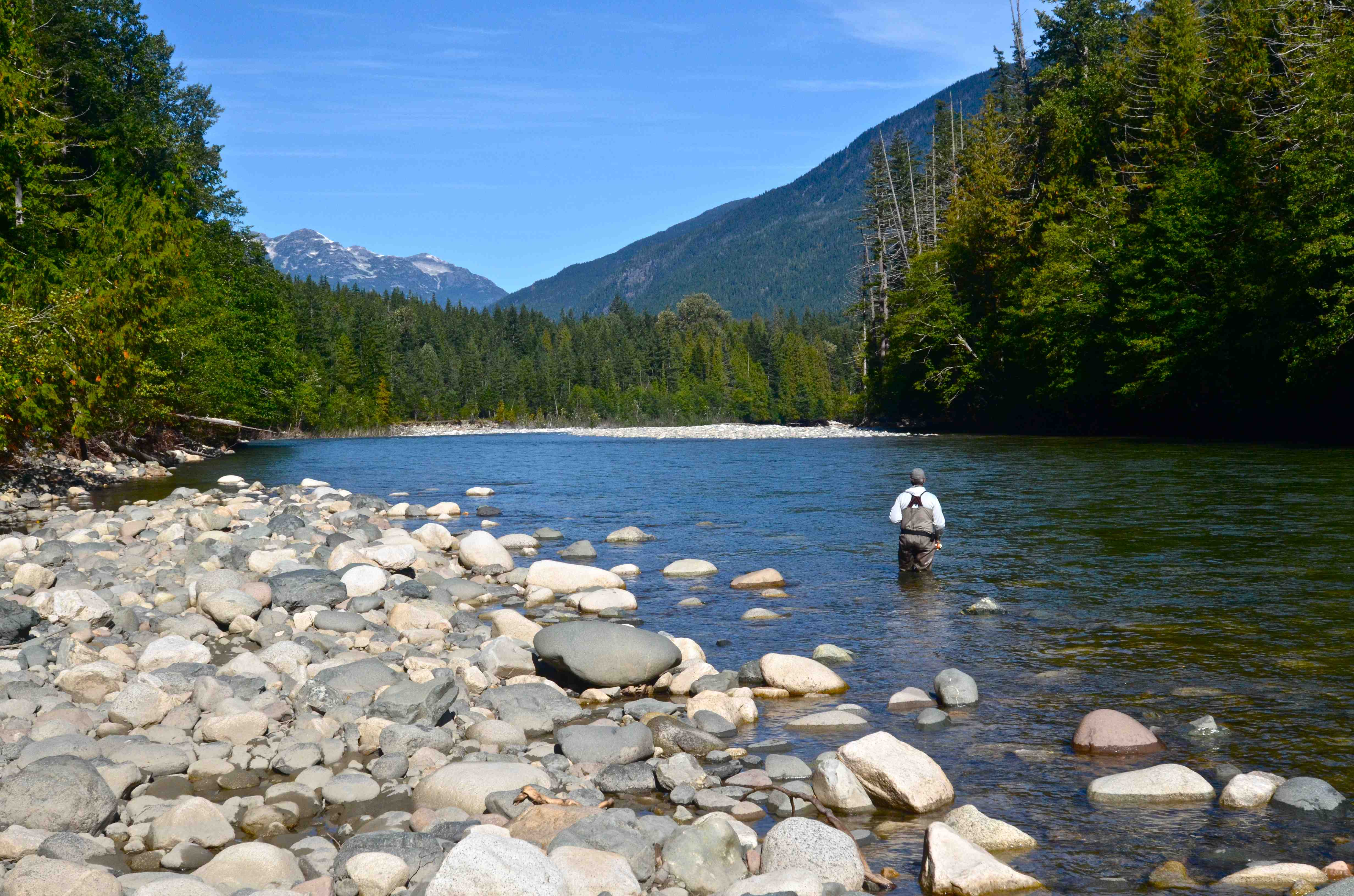 september fly fishing in bc | the caddis fly: oregon fly fishing blog, Fly Fishing Bait