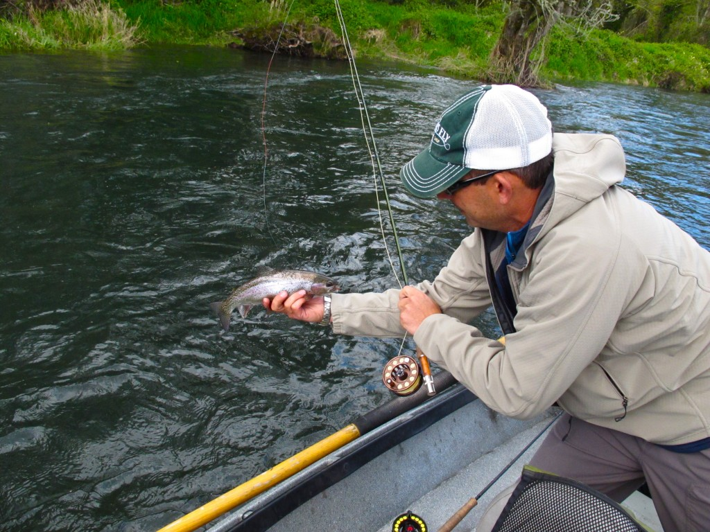 The caddis fly oregon fly fishing blog mckenzie river for Fly fishing shop near me