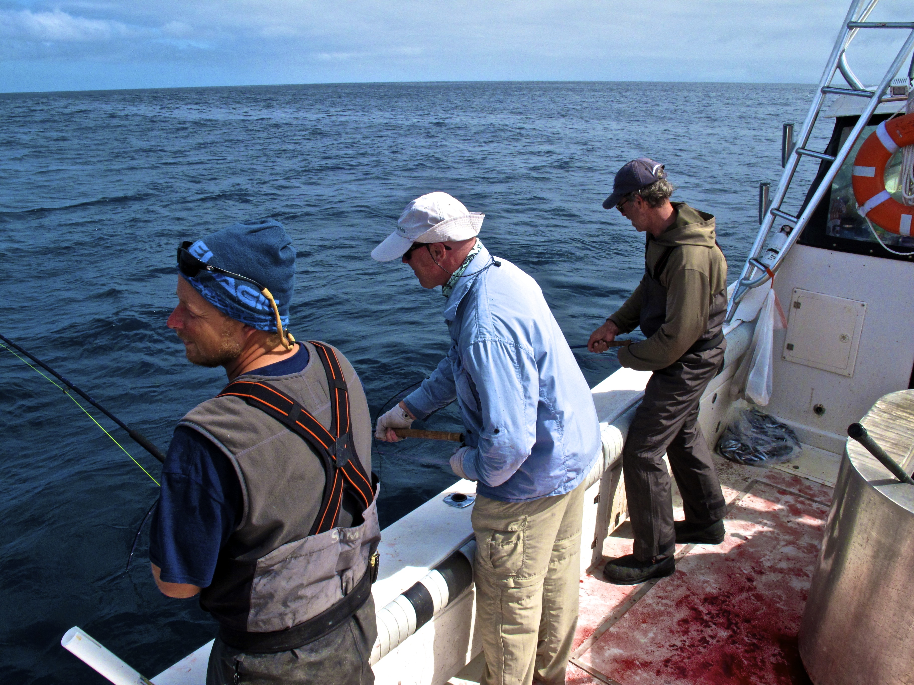 Caddis fly shop albacore adventure august 2013 the for Oregon coast fishing report