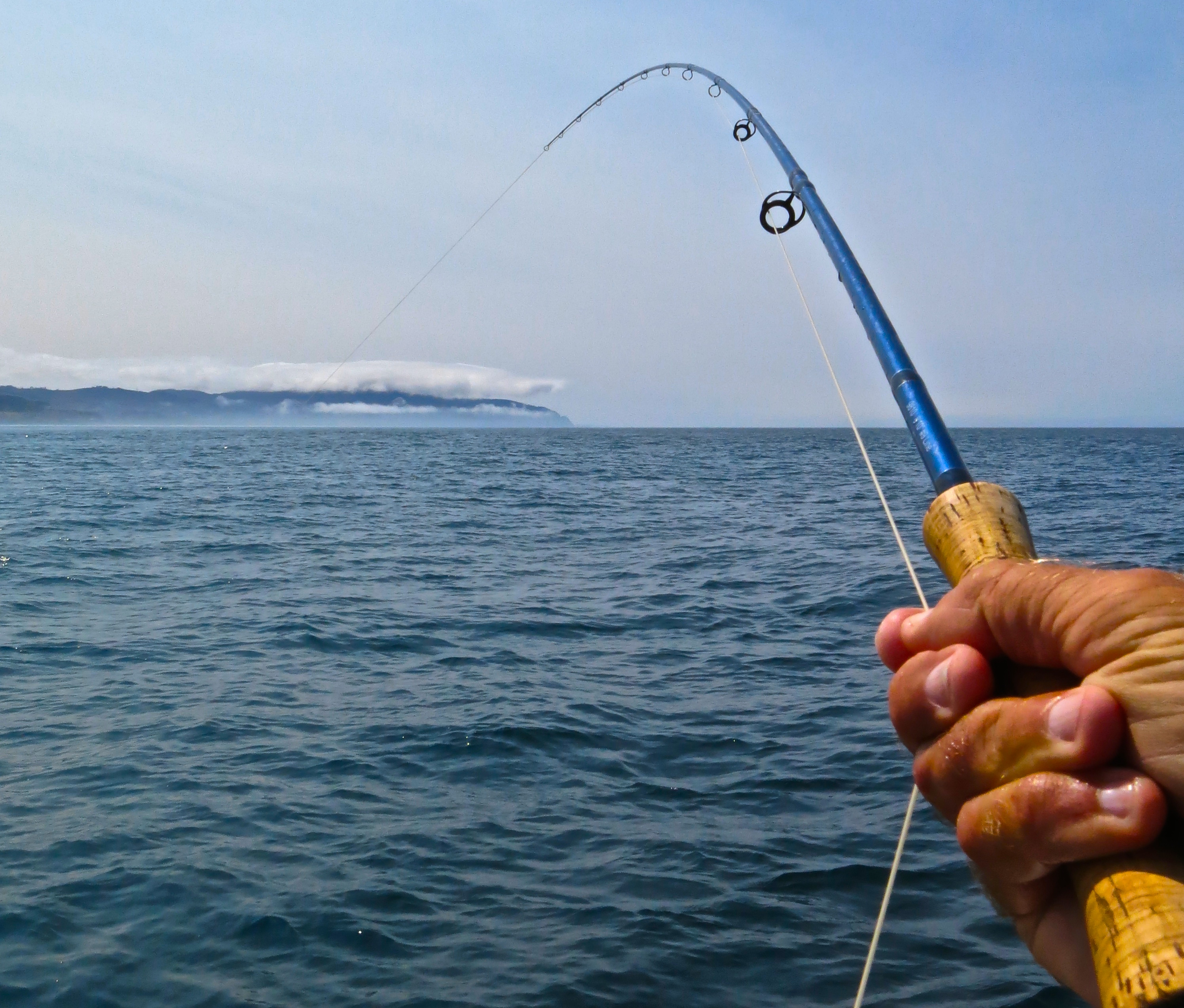Fly fishing the ocean offshore oregon article tue 23 for How many fishing rods per person in texas
