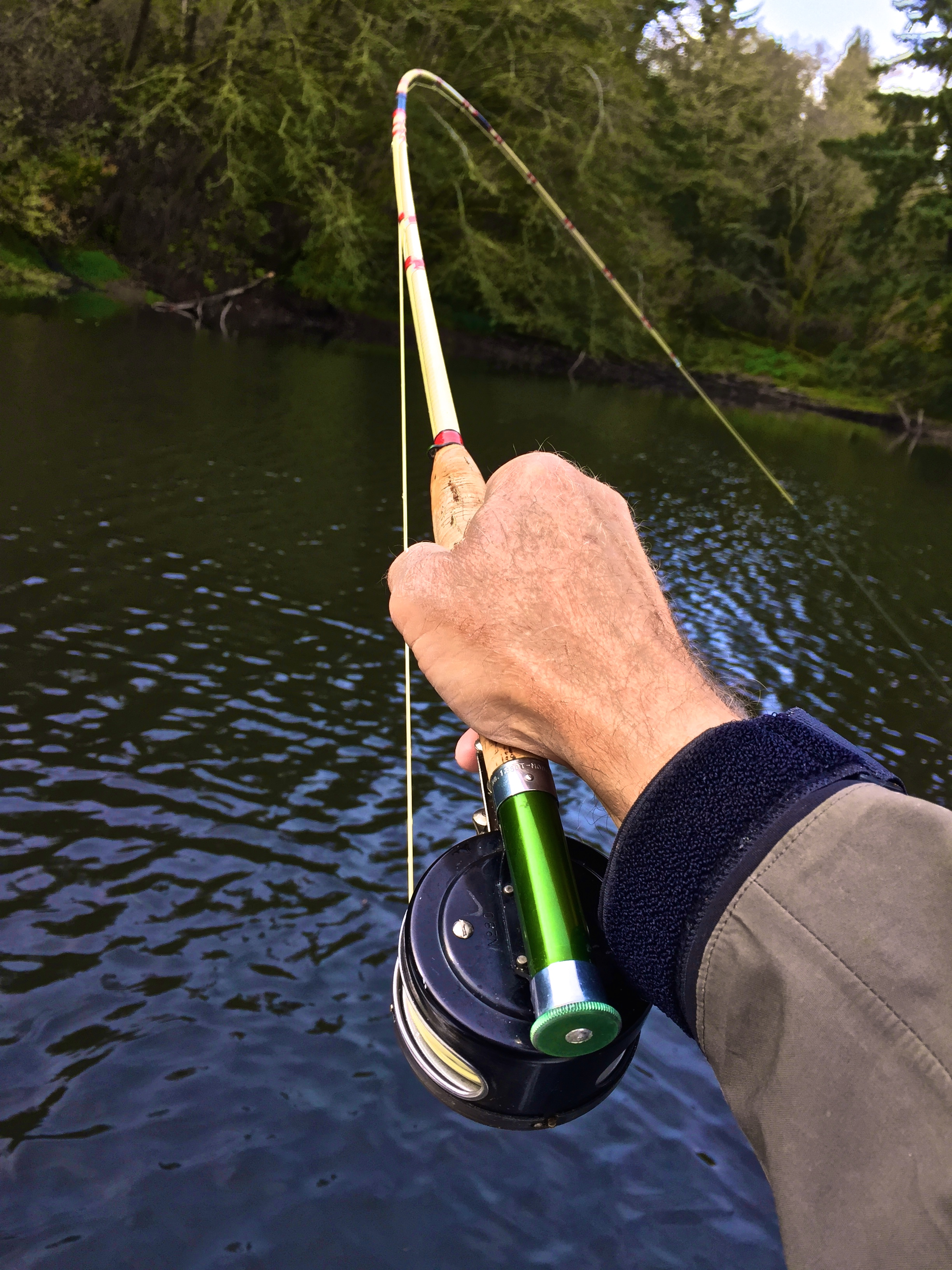 The caddis fly oregon fly fishing blog mckenzie river for Fly fishing tying