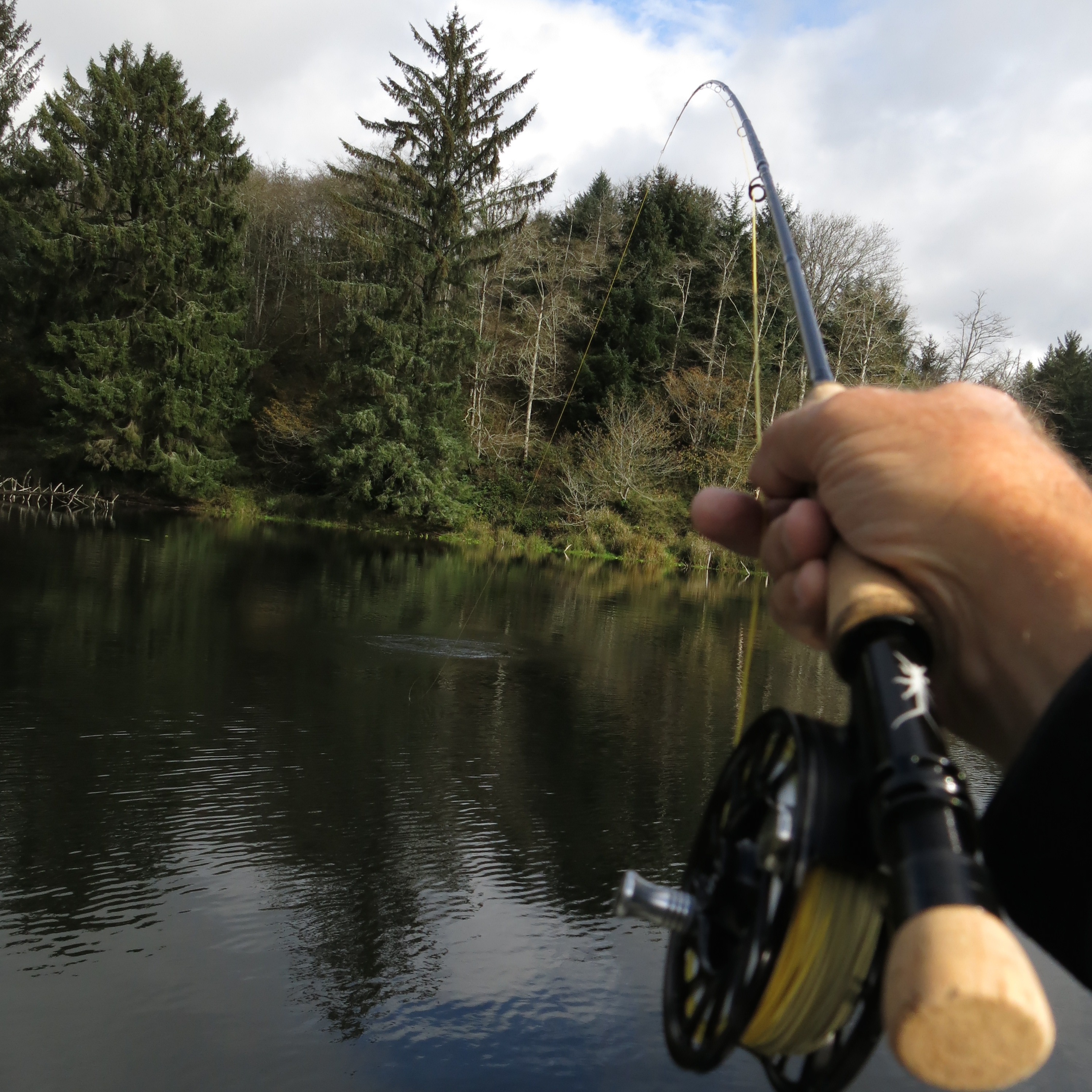 Jay nicholas 2014 review echo shadow 2 on town lake the for Shadow fly fishing