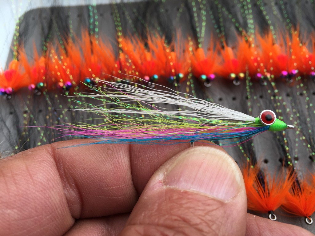 Mini Rainbow Clouser - a great Springer fly.