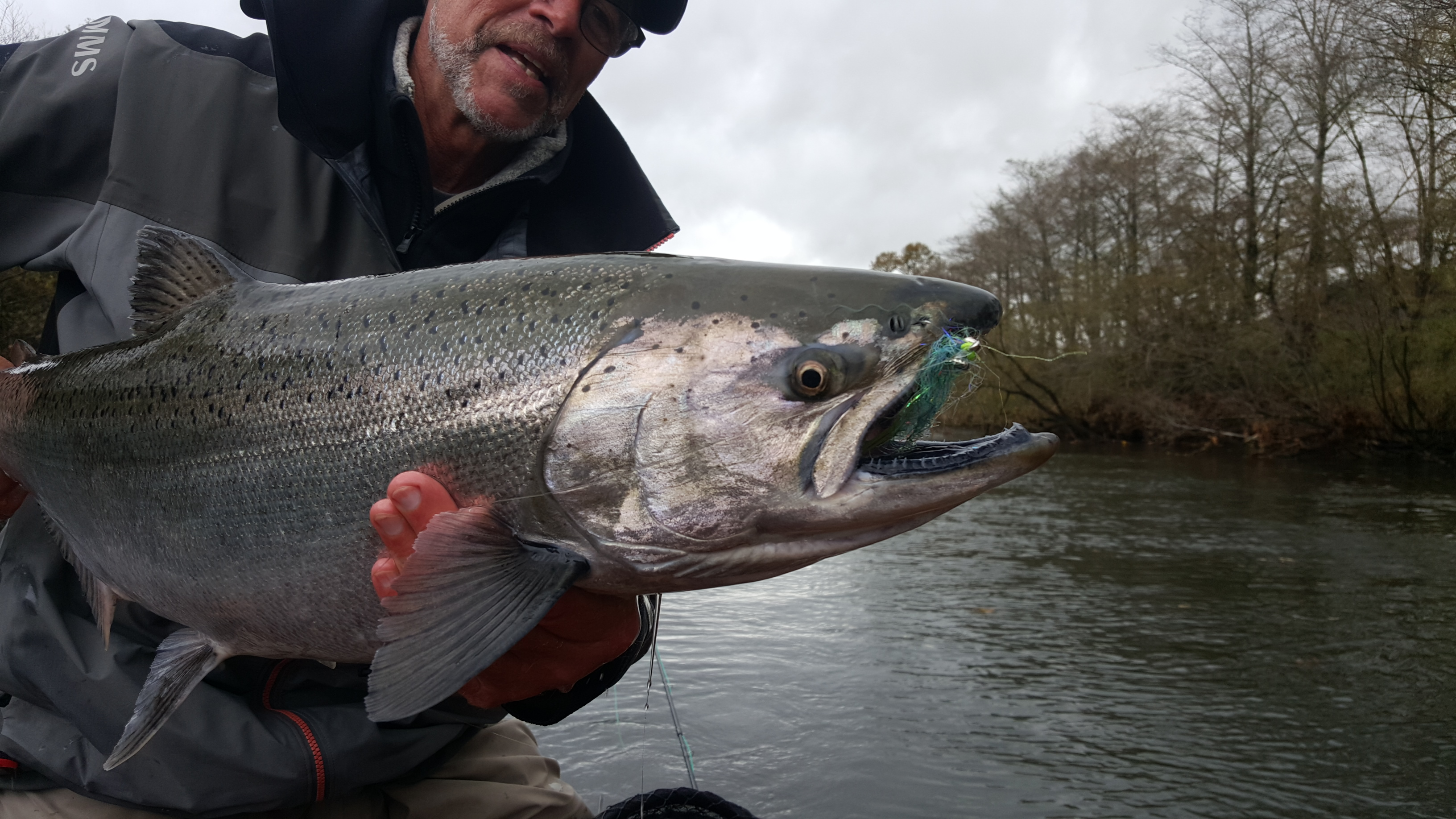 winston b 3 plus jungle rod a winner for king salmon