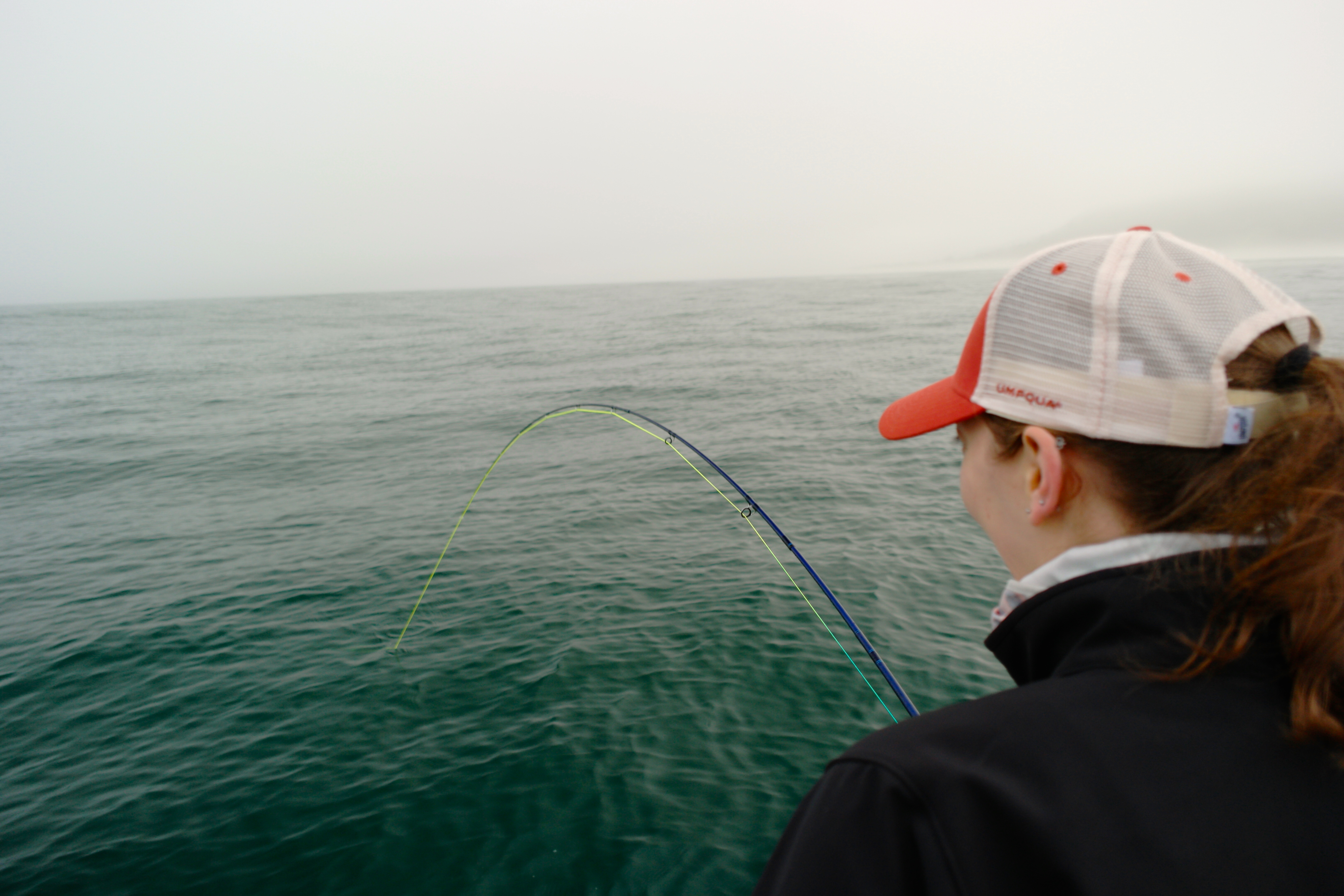 Fishing sea jay sport