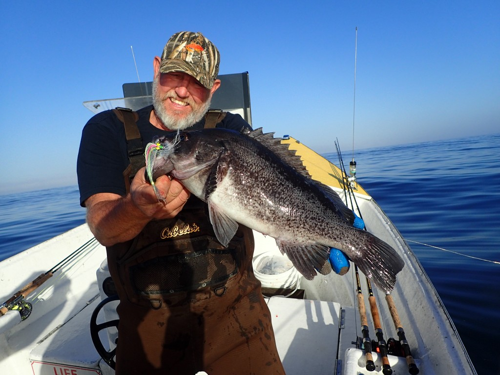 Capt John Harrell unhooks one of my bass. Gosh it was good to be back out on the ocean today.