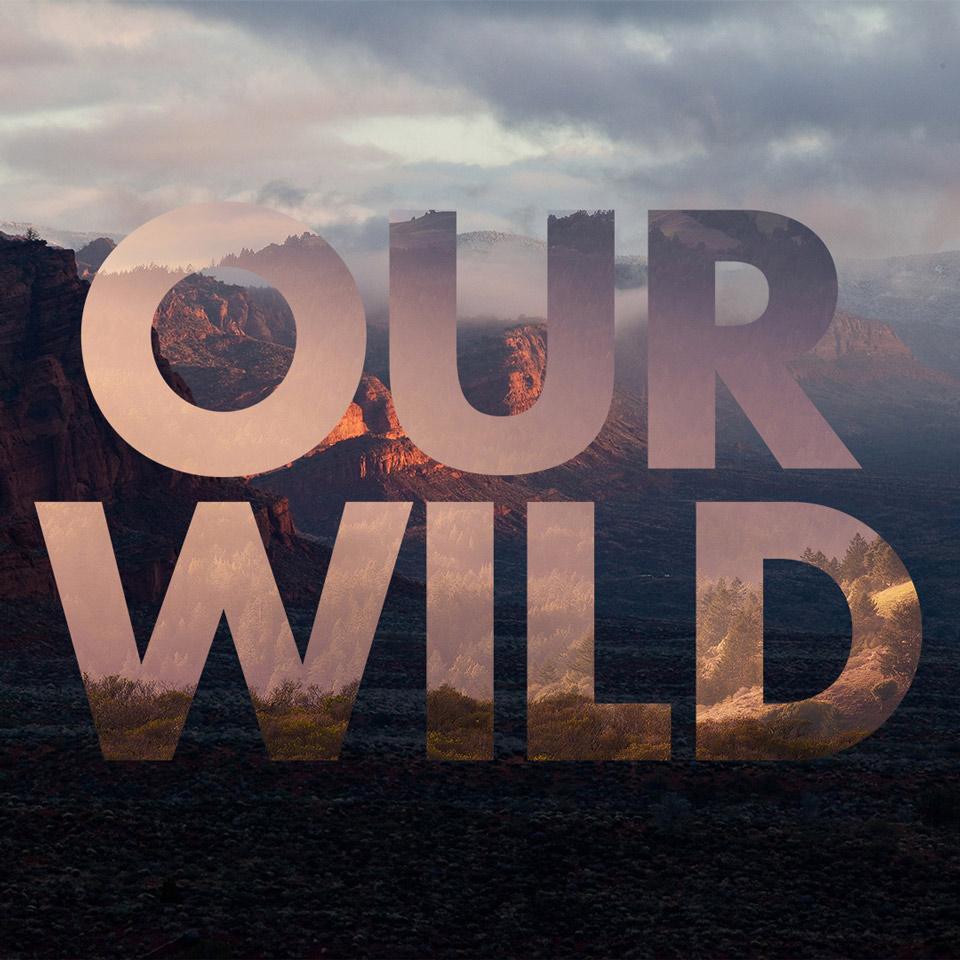 our_wild-12