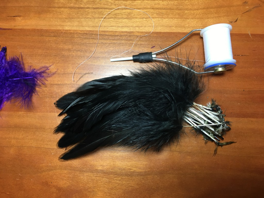 29 super select Schlappen feathers prepared for use as collars on winter steelhead flies.