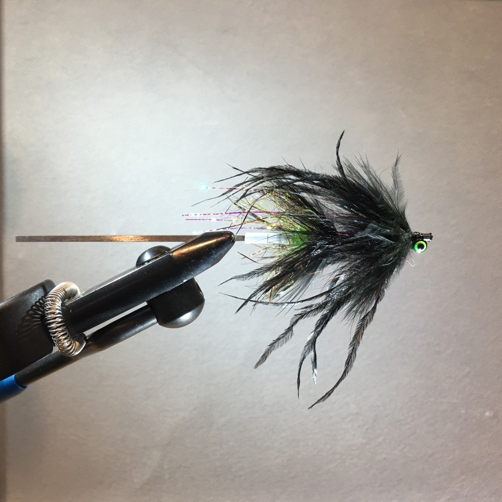 I would call this a black fly, a color that fishes well under a wide variety of conditions, and this fly has a chartreuse trigger point.