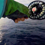 Review of Two Great Saltwater Fly Reels: Hatch and Nautilus