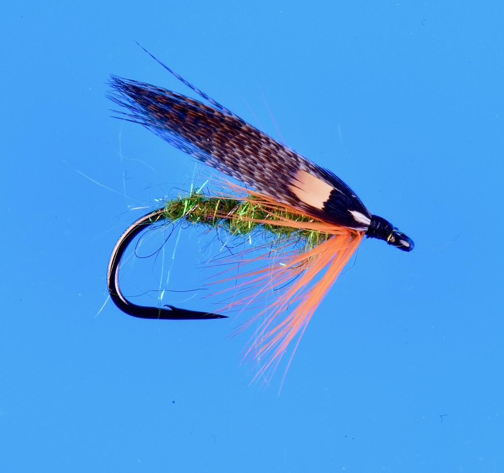 Summer Steelhead fly  tied on NS115 by Jay Nicholas.