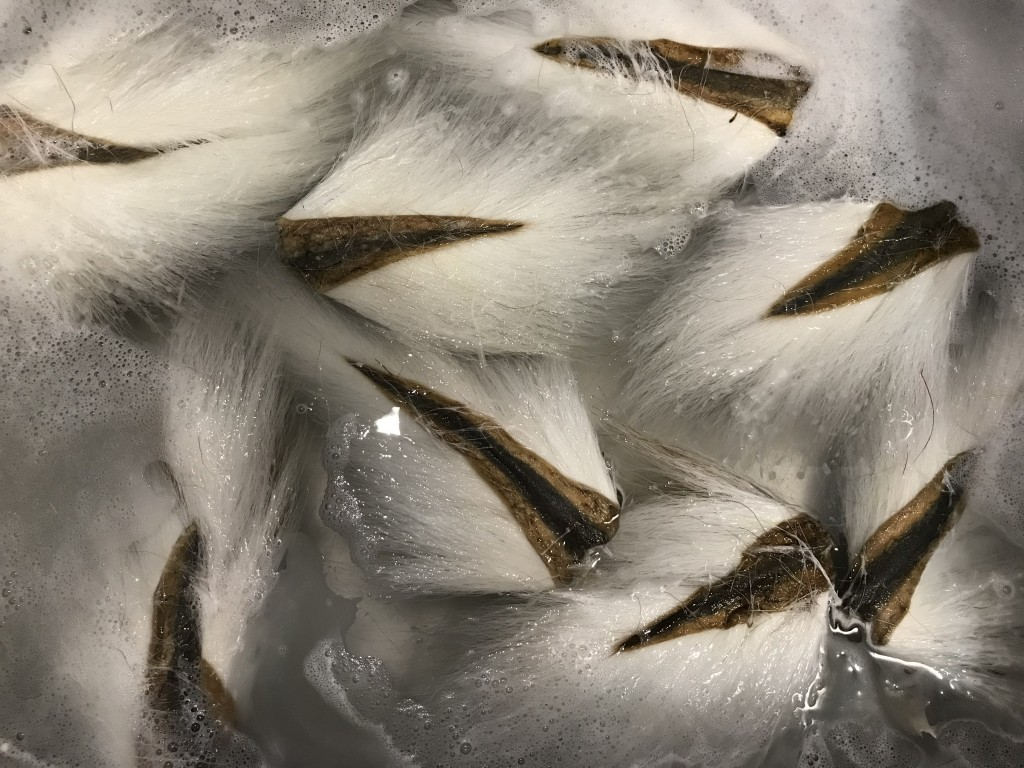 Here are some white bucktails that I threw in the wash basin with laundry soap. I wll let these soak and stir these around as much as required to get any dirt and dust out of them, then rinse several times.