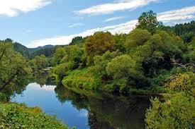 alsea river a