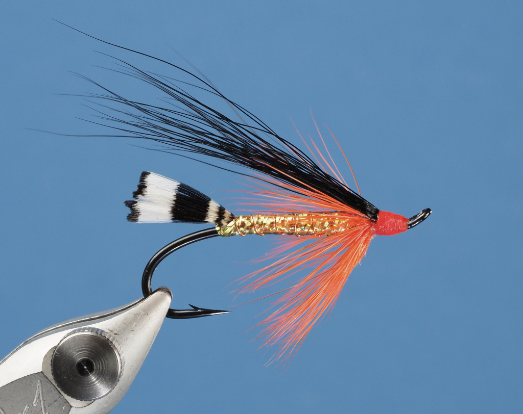 Black Demon Steelhead Fly by Stan Davis