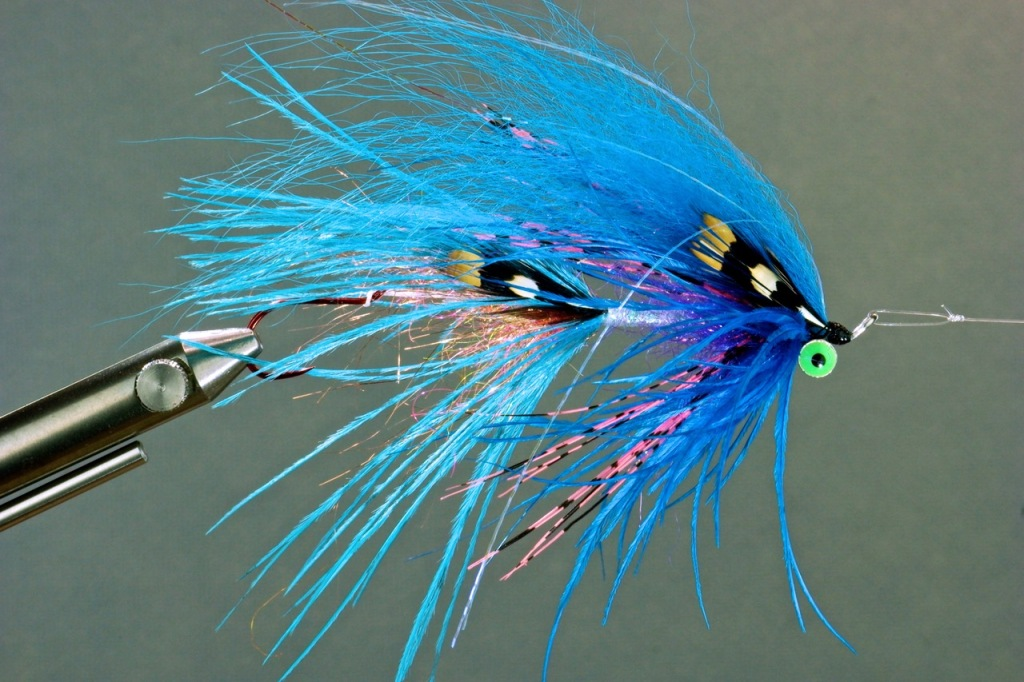 Winter Steelhead Intruder Fly. This fly is in the 4.4-inch size class, a very nice flyy to swing in a river like the Sandy or  the Clackamas, or big water reaches of Oregon and Washington coastal rivers.