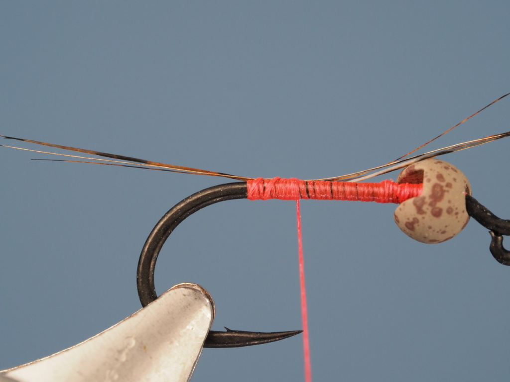 I have attachted the tail fivers to the hook in this photo. I am using Damville FlyMaster 70D thread. I could be tying this fly with a Veevus  8/0 or 10/0 thread just as well.
