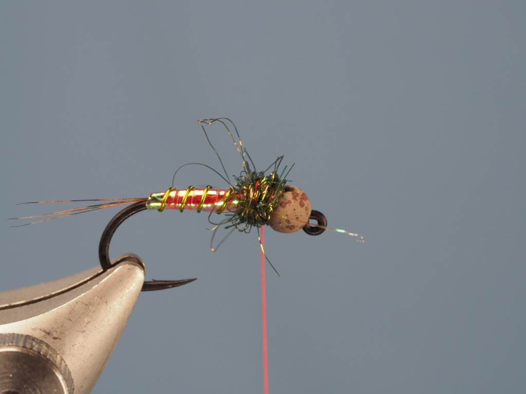 Here is my thorax with the PERFECT bulk. Next, I want to add a color-spot made of my tying thread.